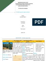 El árbol, sus partes y tipos de maderas-1.docx