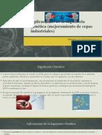 Aplicaciones de la ingeniería genética.pptx