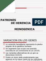 2-Patrones de Herencia Monogenica