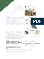 Gramática morfologia semantica sintaxis fonetica fonologia estetica normativa lexicologia