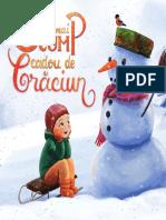 Cadou-Craciun-Danion (1).pdf