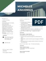 Modern Professional Resume.pdf