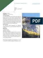 C_05_luiginio_dalle_rive