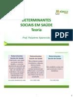 Detrminantes sociais em saúde - teoria