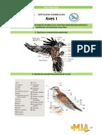 Aves 1.pdf