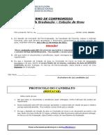 Termo de Compromisso Graduação (atualizado 2020.7)_1