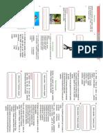 Ficha de Accidentes Del Verbo 17-08-2020 (2)