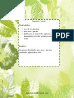 planeador c.naturales 2019.docx
