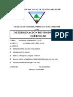 determinación de producción y necesidad (1)