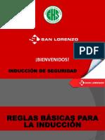 INDUCCIÓN PROVEEDORES - V09.pdf