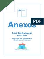 AbrirLasEscuelas-Araucania-Anexos