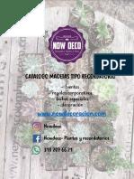 CATALOGO NOWDECO 2019.pdf