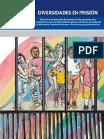 Infome_Diversidades en prisión - 26-06-2020