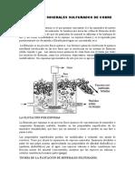 FLOTACION DE MINERALES SULFURADOS DE COBRE-IX CICLO