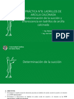 PRACTICA N°8 Determinación de la succion y eflorescencia en ladrillos de arcilla calcinada.pdf