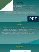 EDAFO_3 2020_Estructura (1).pdf