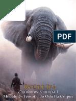 10 - OUROBOROS IWURE IFA M2.pdf · versão 1.pdf