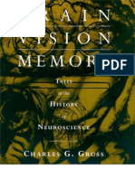 brain_visions_and_memory
