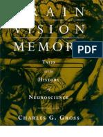brain_visions_and_memory