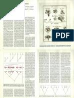 Minelli Alessandro - Osservazione sul Systema Naturae di Linneo