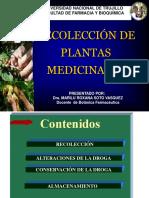 Semana_6_seminario_clase de Recolección de Plantas Medicinales