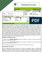 MATEMATICABASICA.pdf