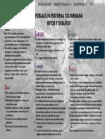 RETOS Y DESAFIOS INDIGENAS DE COLOMBIA