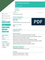 Dener's Resume