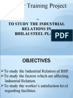 LCM Summer Training Project INDUSTRIAL RELATIONS IN BSP.ppt