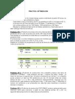 PRACTICO OPTIMIZACION 1 (1)-convertido