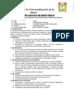 PLAN PLATOS TIPICOS.docx