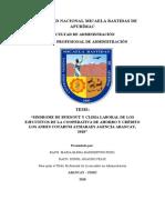 TESIS-UNAMBA