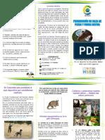 FOLLETO PROHIBICION DE CAZA PRESERVECION DE ESPECIES NATIVAS.pdf