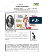1° SESION 16 clases por W.pdf