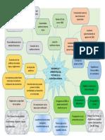 Mapa mental desarrollo de la Auditoria Interna.docx
