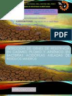 Detección de genes de resistencia en cadmio plomo