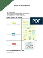 TECNICAS DE COLORACION BACTERIANA (1).docx