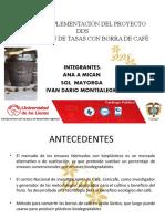 PLAN DE IMPLEMENTACIÓN DEL PROYECTO DDS.pptx