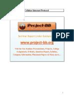 Cellular Internet Protocol.pdf
