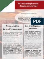 DirecCommercialCoDev.pdf