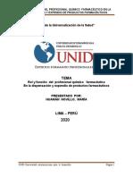 TESIS UNID 2020 MARY.docx