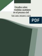 1. 10 Estudios sobre las medidas cautelares en el proceso civil