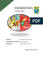 COMENTARIO DE LAS GUIAS DE ALIMENTACION PERUANA-YESSENIA.pdf