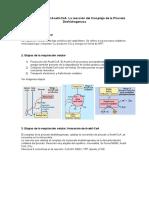 Tema 4 - Origen del Acetil-CoA. La reacción del Complejo de la Piruvato Deshidrogenasa.docx