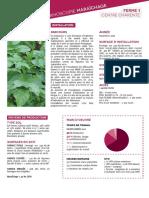 Fermoscopie-legumes-bio.pdf