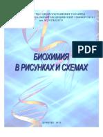 Biokhimia_v_risunkakh_1.pdf