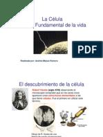 CELULA-3[1] pdf