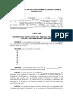 FORMATO DE ACTA CONSTITUTIVA S.A. DE C.V.