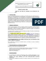 TRABAJO GRUPAL FINAL 2020B.docx