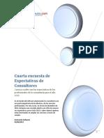 Expectativas de consultores.pdf
